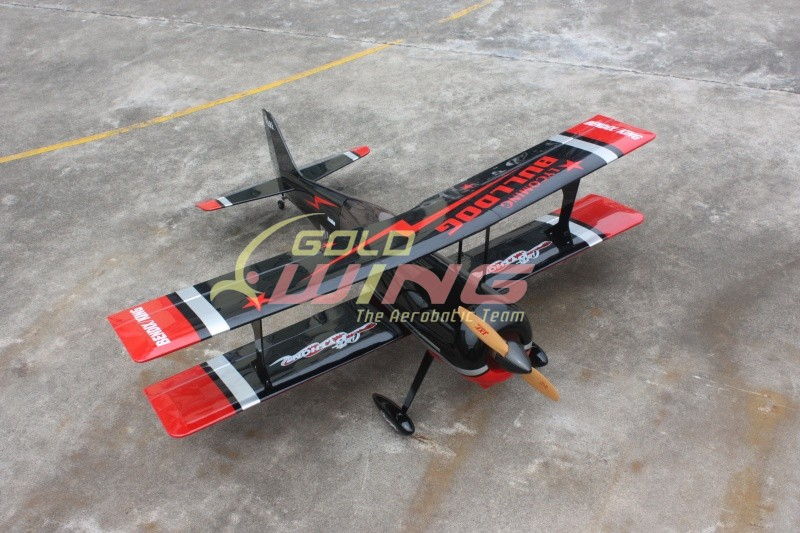 Gold Wing RC 50CC Pitts